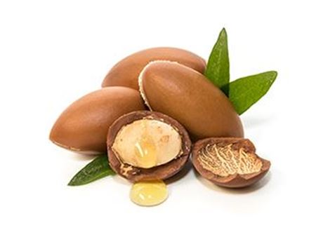 Picture for category Argan Oil
